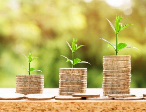 Wendell Partners: valmis ohjelmistopaketti nopeutti yritystoiminnan aloittamista